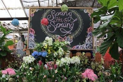 140424-cityfloral-springtime