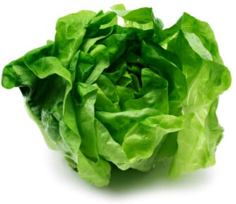 lettuce-isolated edit