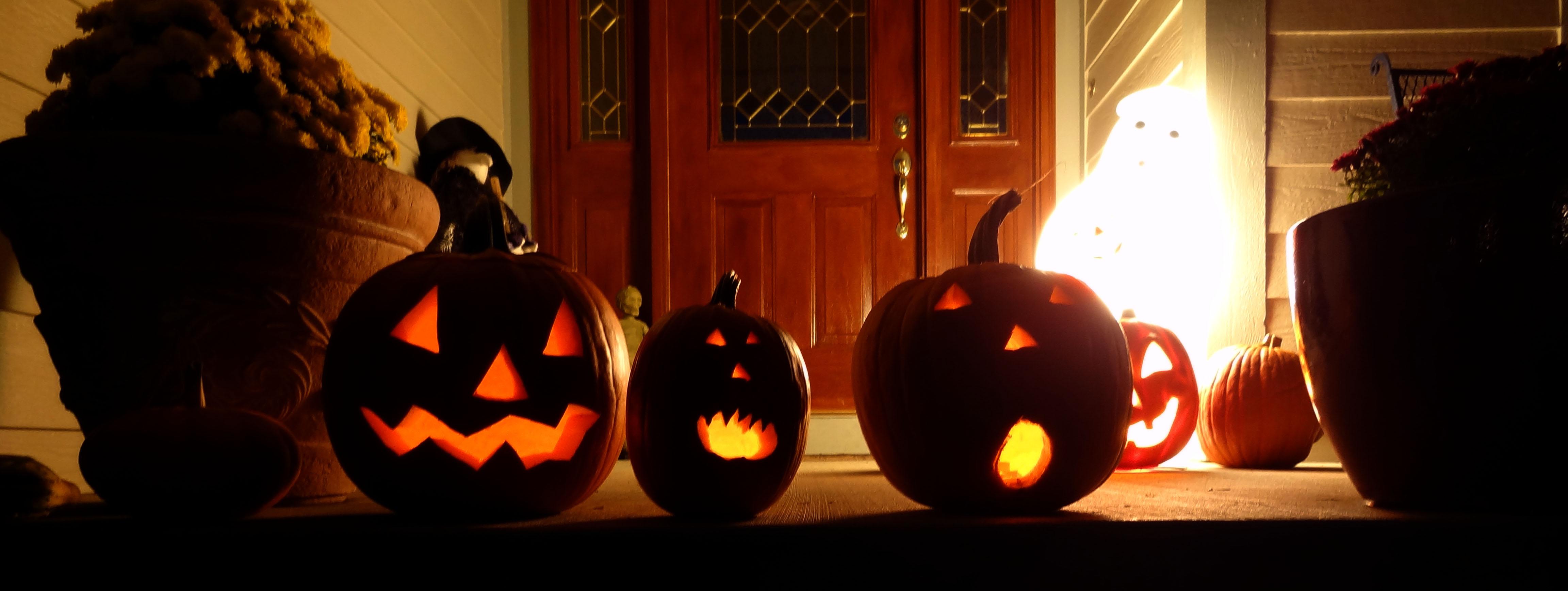 pumpkins row Halloween