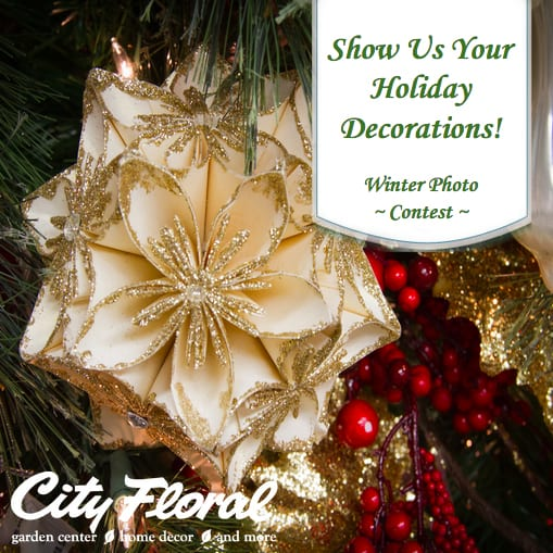 City Floral Garden Center Holiday Decorations Photo Contest Denver CO