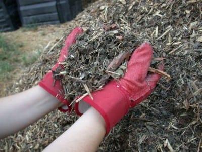Mulch_shredded_yard_waste