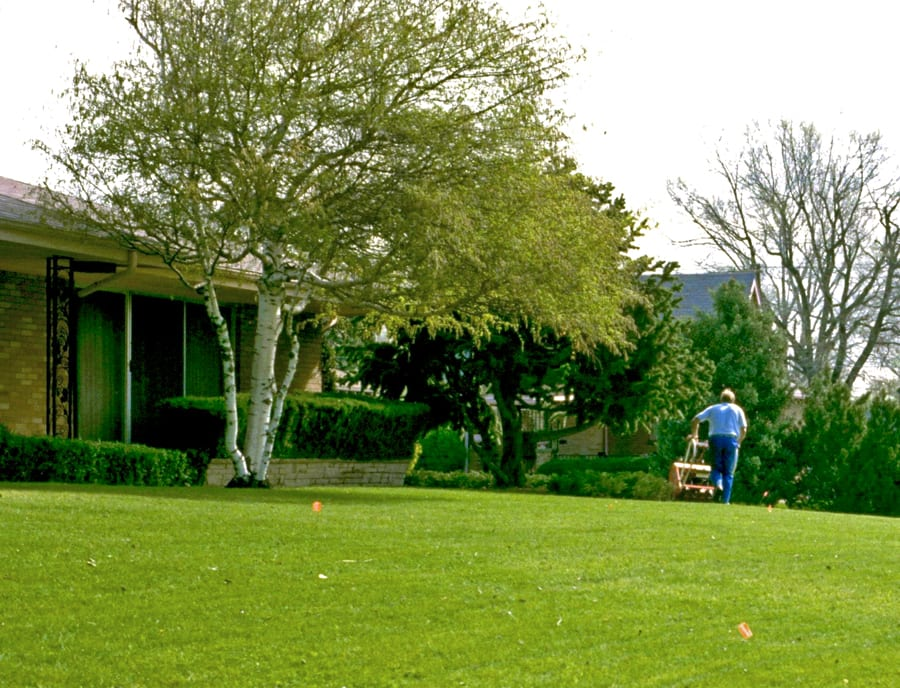 Man aerating the lawn. William M. Brown Jr., Bugwood.org