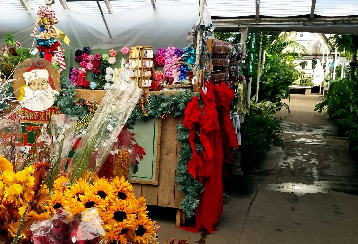 Christmas decor counter greenhouse City Floral
