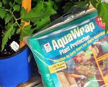 aquawrap wall of water tomato