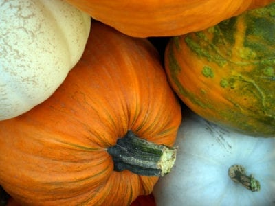 pumpkins-detail-2