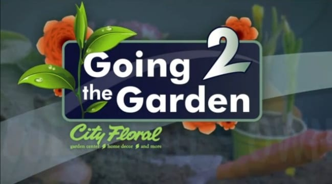 City Floral Garden Center Video Series