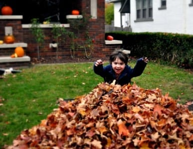 Child jumping in a pile of leaves