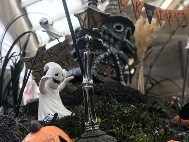 Halloween fairy garden at city floral greenhouse and garden center