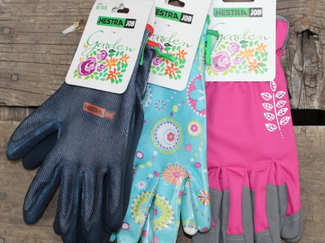 gardening gloves at city floral greenhouse and garden center