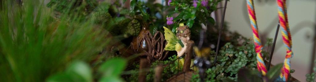 Miniature Gardens Denver