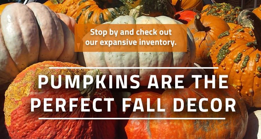 Pumpkins Slider