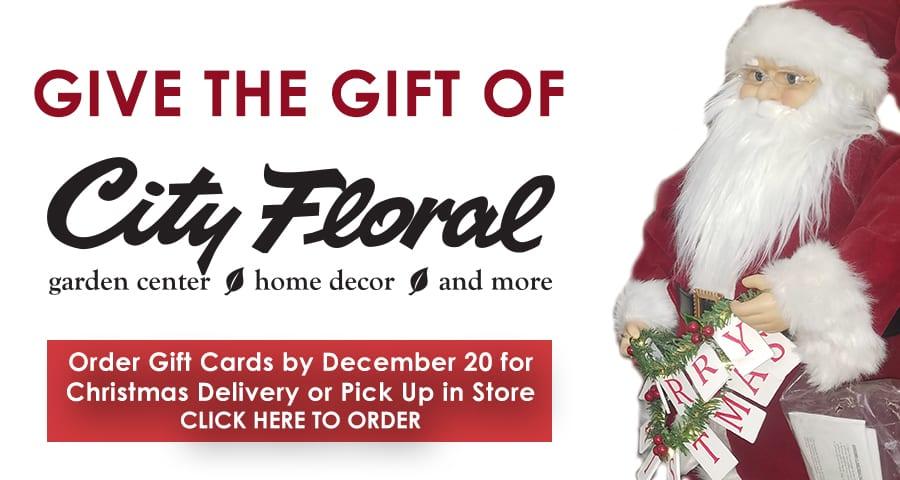 Gift Card Slider FINAL