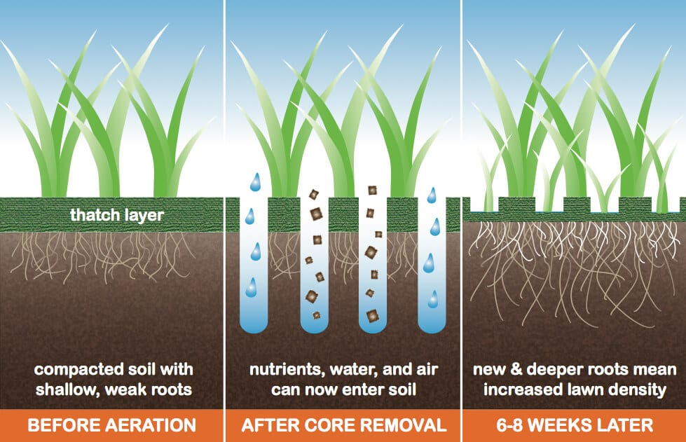 Fall lawn care starts with aeration