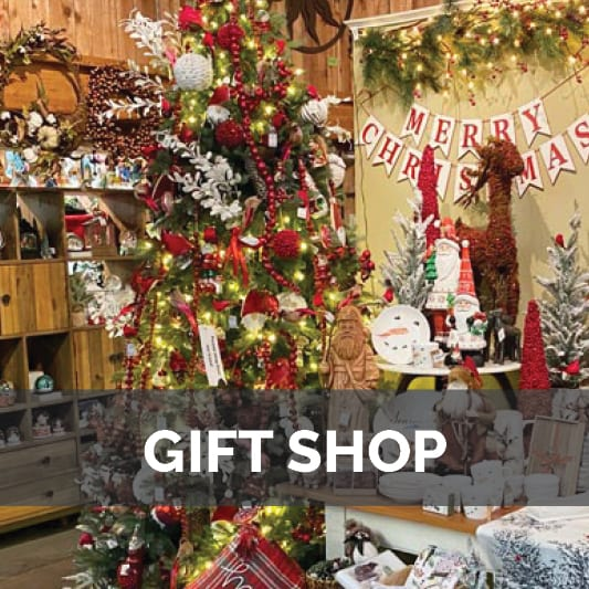 Holiday Gift Shop at City Floral