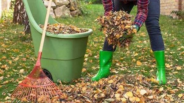 November Cleanup